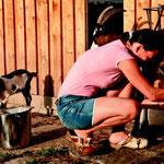 Dani Damm melkt die Tauernschecken und bereitet Ziegenkäse aus der Milch