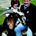 Mit Zuchtbock Edi, dem Begründer der Herde