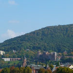 Odenwald-Erlebnis