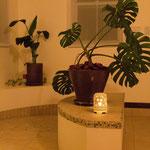 玄関ホールにはリゾート感溢れる観葉植物を配置。