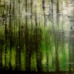 Reflexion   70 cm x 100 cm   Öl auf Leinwand