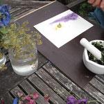 Farbauftrag mit Blütensaft