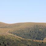 ... in Mitten von grünen Hügeln