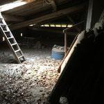 Nettoyage débarras, greniers, caves, désinfection, maison