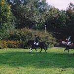 Ponyquadrille auf der Sommerblumenwiese 2001