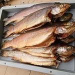 Forellen oder Saibling aus der Neubrucker Fischzucht - aus dem hauseigenen Räucherschrank