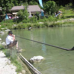 Alphorn am See - Fischgeflüster