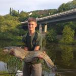 Wels 8,2 kg (103 cm) auf Tauwurm