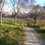 Parco della Rimessola
