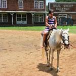 Unterwegs Richtung Isaan - allerdings nicht zu Pferd