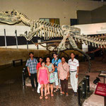 Im Dinosauriermuseum