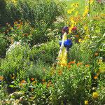 Frau Lässer`s Blumen- und Kräutergarten