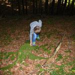 Eichhörnchenspiel...Nüsse vergraben und danach wieder suchen...