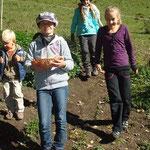 Am Mittwoch Vormittag wanderten wir zum Bauern. Die Eier für die Palatschinken sammelten wir selbst.