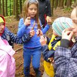 Wir lernen über Rehe, Hirsche, Füchse und anderen Tieren, die im Wald wohnen.