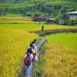 Sur le chemin de l'école à Hapao