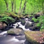 Cascades de Pont-es-retour (14)