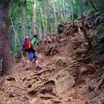 Mont Choungi