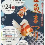 ひ、とさん:「江戸川 金魚まつり」7月23日、24日