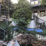 Sturmschaden, aufs Dach gekippte Kiefer