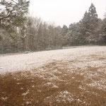 冬のふぃーるど2013