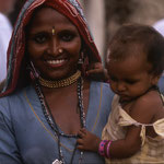 India - Rosa del Deserto