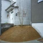 大和郡山市O様邸 造園・花壇植栽工事 イロハモミジ植栽。貼り芝 施工事例 施工後