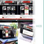 Réflexion sur le design du site de la société DUPONT SAS