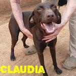 Claudia/Ronja - Zuhause gefunden