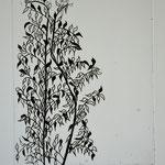 Ficus. ( Technique Eau forte).