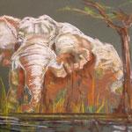 64 - Eléphant qui sort du rocher - pastels 2015 VENDU