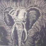 7 bis - Elephant - pastels 2012