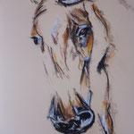 86 - Esquisse tête de cheval - pastels 2016 - encadré 51x41