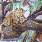 157 - Léopard dans l'arbre aux saucisses - février 2020 - dimensions 50x65