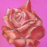 59 - La rose - pastels 2015