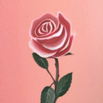 バラ(30.0×22.5cm)