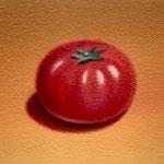 トマト(14.0×23.0cm)