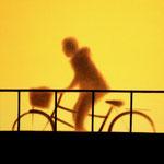 自転車(72.7×72.7cm)