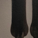 猫の手(10.0×30.0cm)