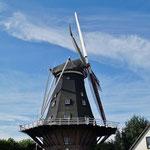 Mühlen sind immer wieder auf der Tour zu sehen (hier eine in Swartbroek)