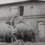 Wir sind ein landwirtschaftlicher Familienbetrieb, der bereits seit vielen Generationen besteht.