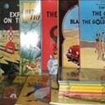 Colección en inglés