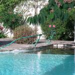 Main courante de piscine avec roses forgées et grenouille