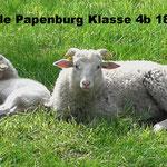 Kirchschule Papenburg 18.04.-20.04.  Foto: Lea Overmann