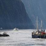 Milford Sound - Tasman Sea