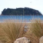 Marahau - Abel Tasman Nationalpark