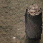 Okarito Lagoon