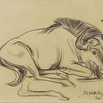 Böckstiegel Zeichnung 'Zoo Dresden' Schätzung & Bewertung