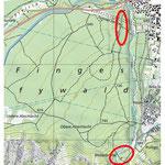 Exkursionsgebiet Pfynwald