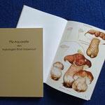 Das Aquarellbuch aus Zeichnungen von Ernst Habersaat